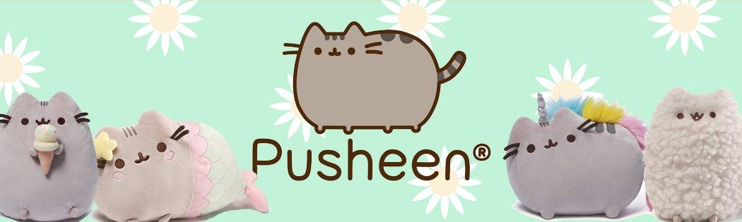 pusheen banner